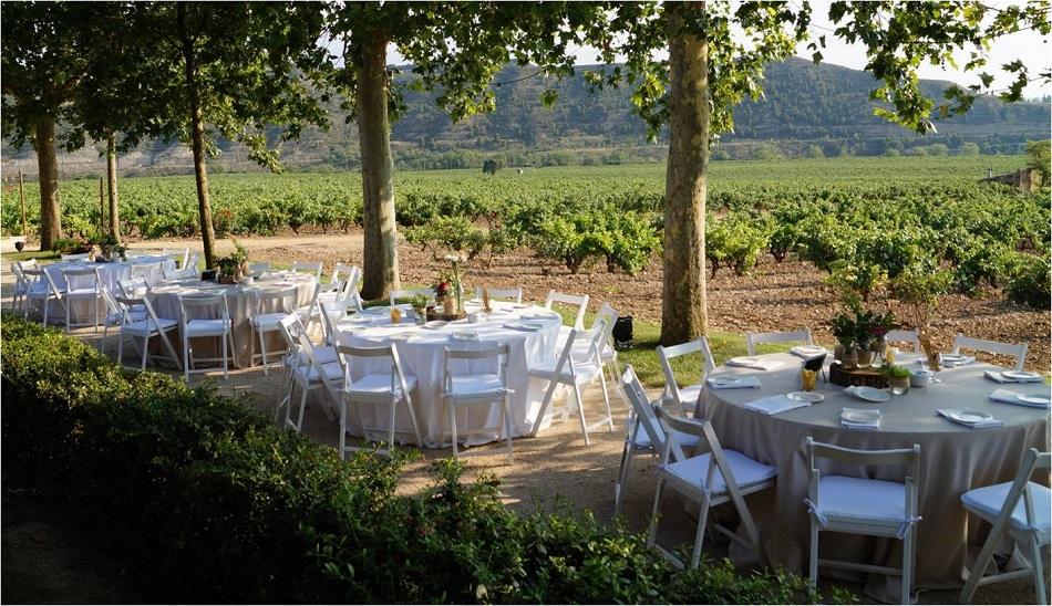 Weddings in winery